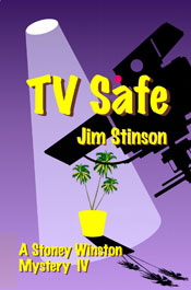 TV Safe by Jim Stinson